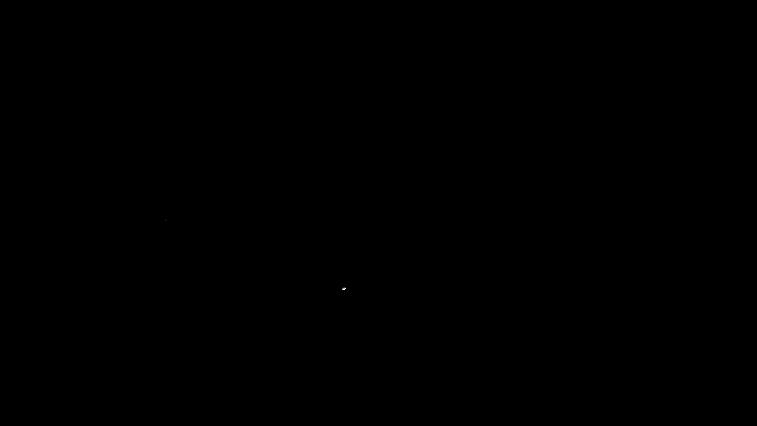 black triguna